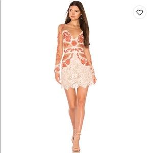 For love and lemons mesh dress! Size small